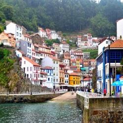 las raíces de asturias
