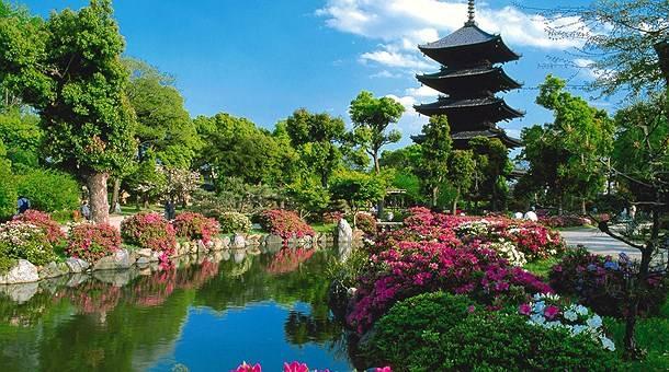 Japón ruta Bonsai en tren + Bali Luna de miel desde Madrid