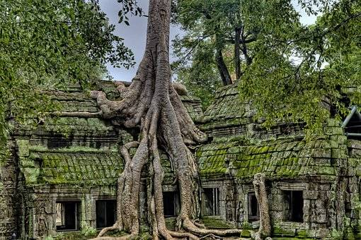 Triangulo del Oro y Camboya