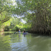 Samaná, paraíso ecológico al noreste de la República Dominicana