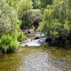 Salida piraguas y senderismo Parque Natural Lago Sanabria (Zamora) 10-12 julio 2020