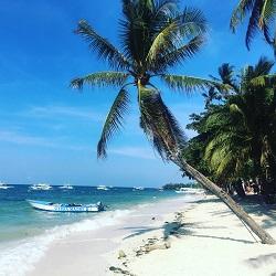 FILIPINAS, Buceo desde hotel o vida a bordo