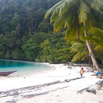 Playa virgen en Raja Ampat