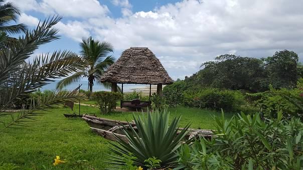 Naturaleza pura en Zanzíbar