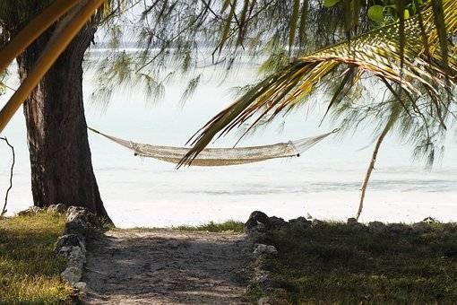 Naturaleza en Zanzíbar