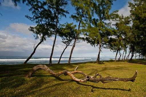 Belleza de isla Mauricio