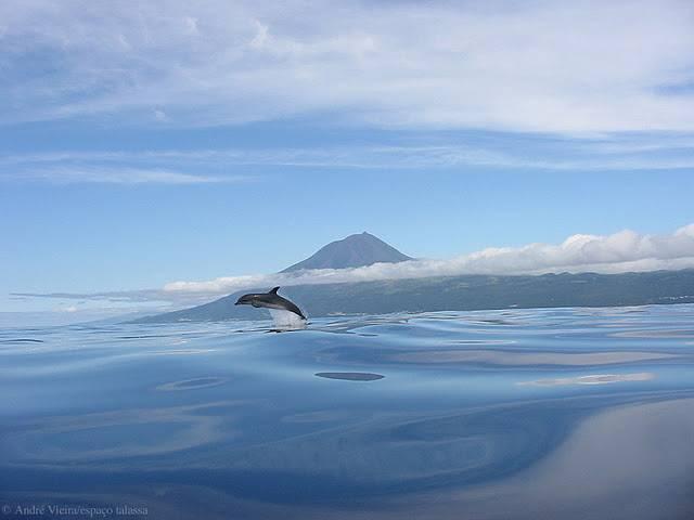 Ilha Terceira 7N