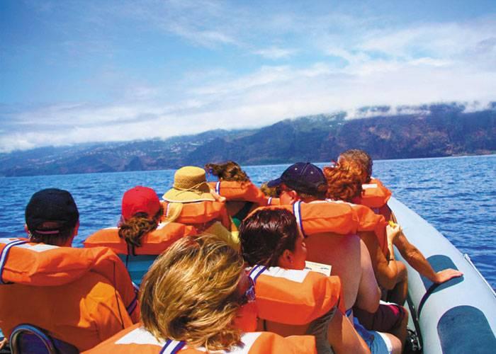 Obervação de Baleias e Golfinhos