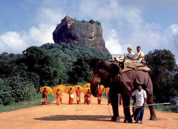 Sri Lanka elefante